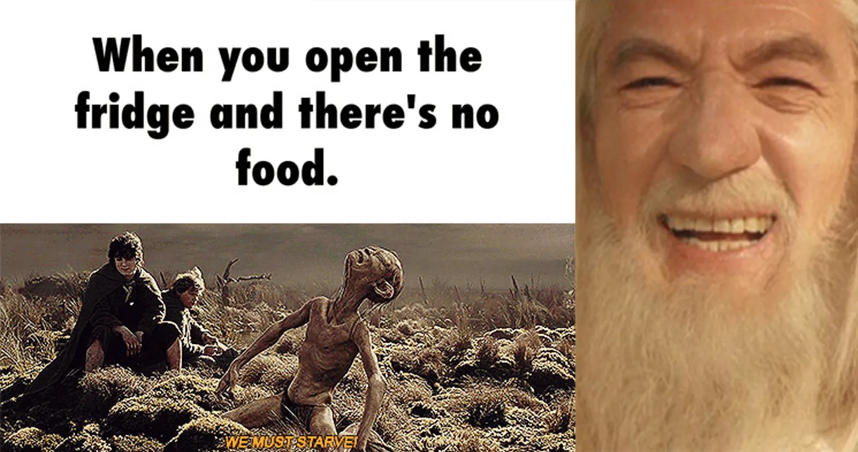 15 Memes That Will Make Any True 39lord Of The Rings39 Fan Lol