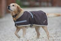 Mark Todd Waterproof  Dog Coat