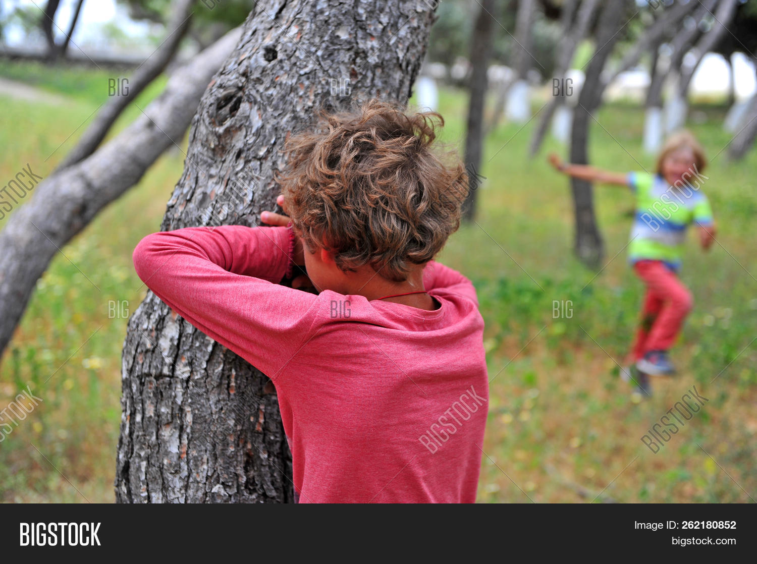 Hide And Seek Kids Two Kids Playing Hide Image Photo Free Trial Bigstock