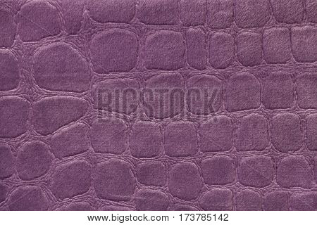 Purple Background Soft Image  Photo (Free Trial) Bigstock