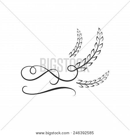 Vector Logo Template Vector  Photo (Free Trial) Bigstock - wheat template