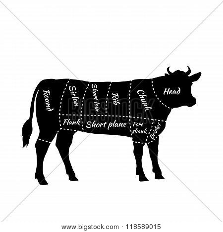Scheme Beef Cuts Vector  Photo (Free Trial) Bigstock