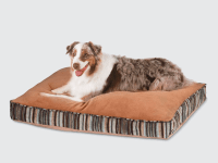 The best dog beds you can buy - Business Insider