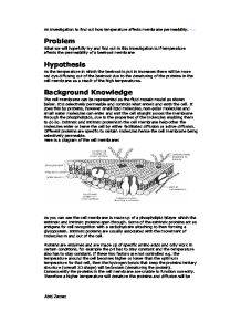 AS Level Biology coursework help needed?