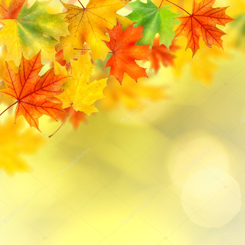 Falling Leaves Live Wallpaper Hd Backround With Autumn Leaves Stock Photo 169 Artjazz 3902296