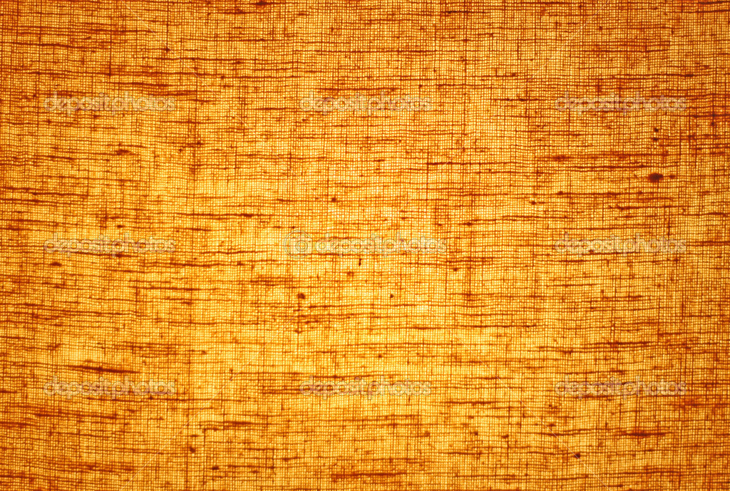 Fall Wooden Wallpaper Lampshade Texture Stock Photo 169 Radaway 3558879