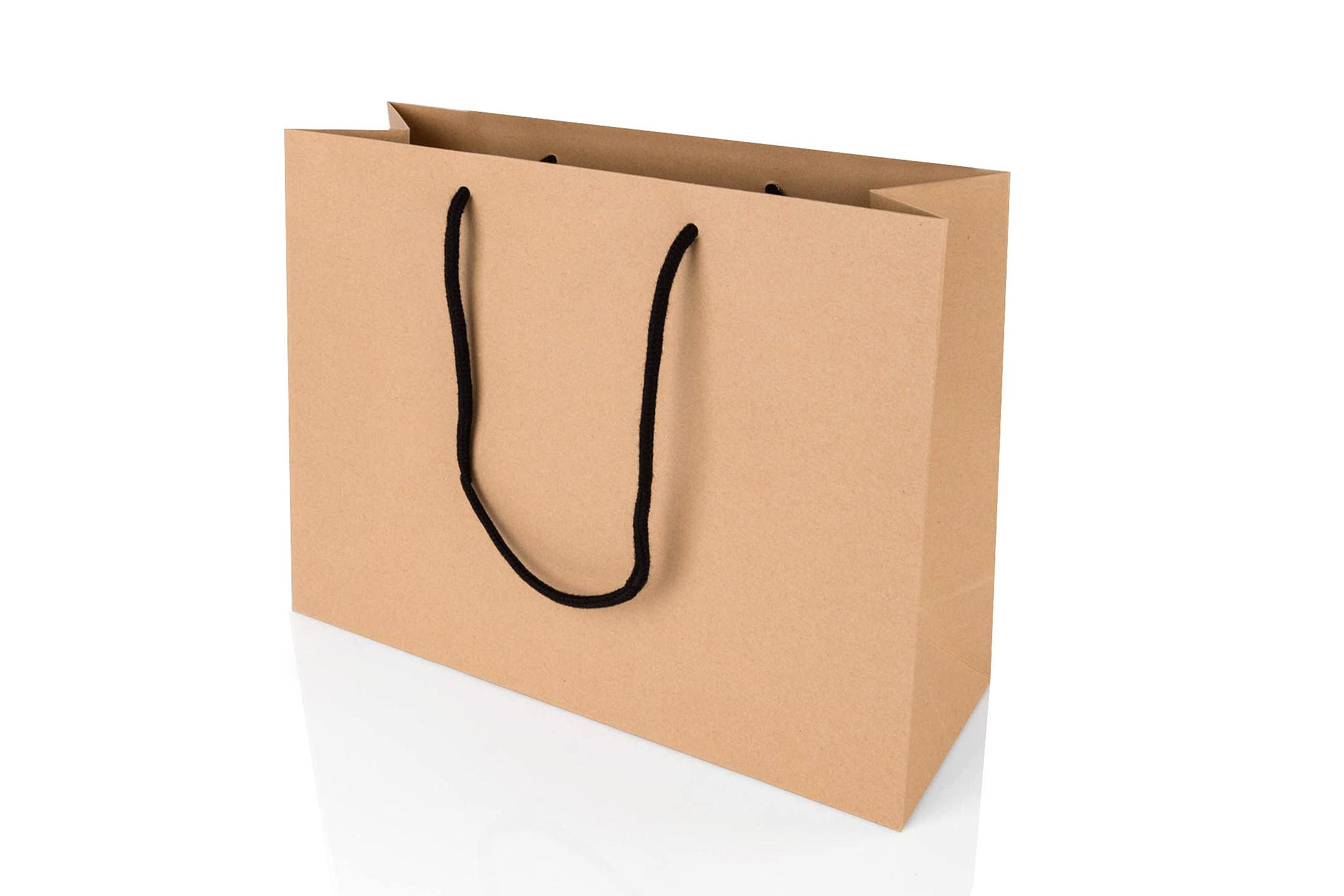 Paper Gift Bags Wholesale Large Landscape Kraft Paper Gift Bag With Rope Handles 250