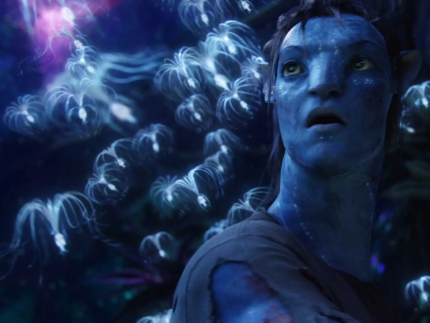 Godfather Hd Wallpaper James Cameron Discusses Avatar Sequels Will Film In New