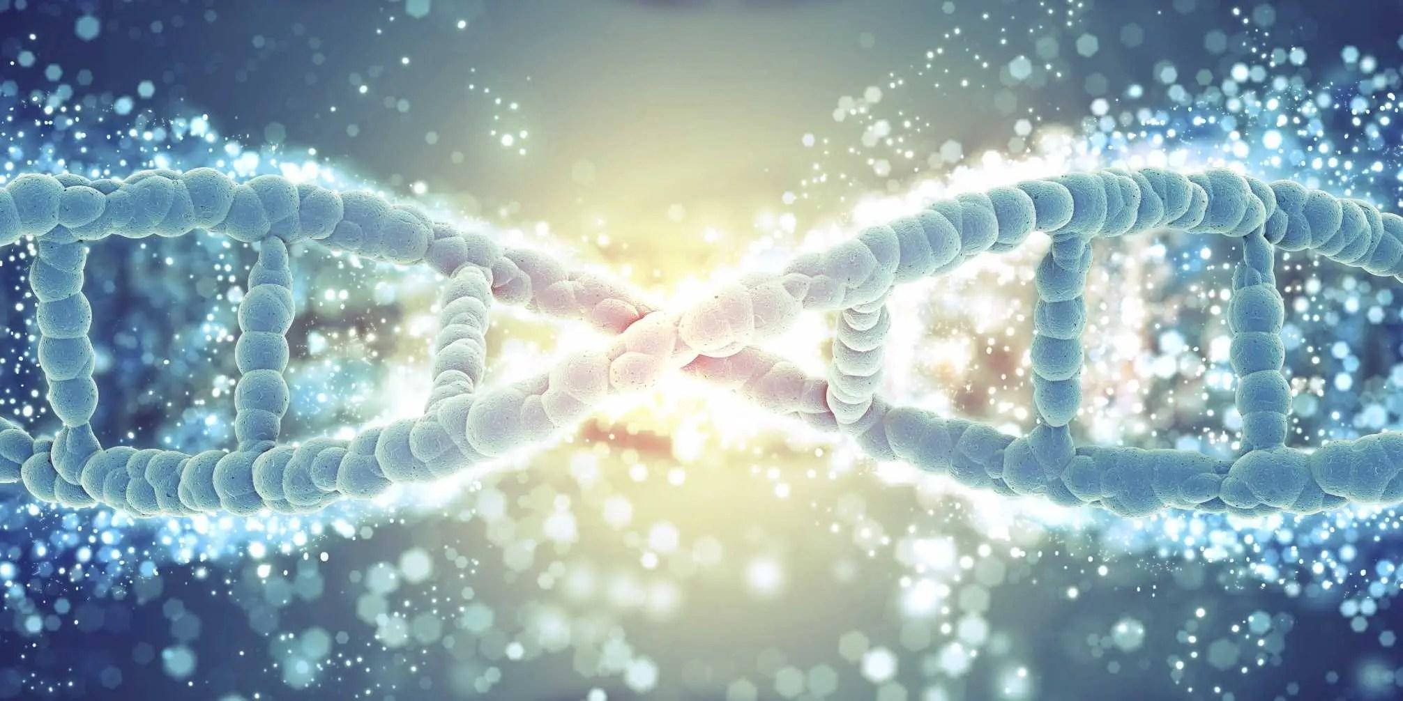 3d Changing Wallpaper Vegetarian Diet Is Changing Human Genes Business Insider