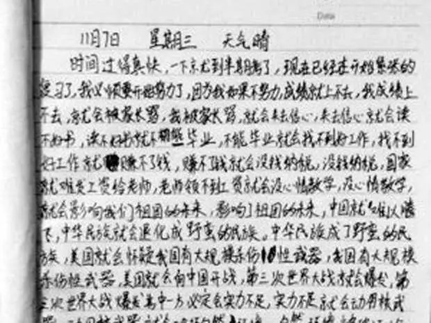 China Children39s Essay Goes Viral Business Insider