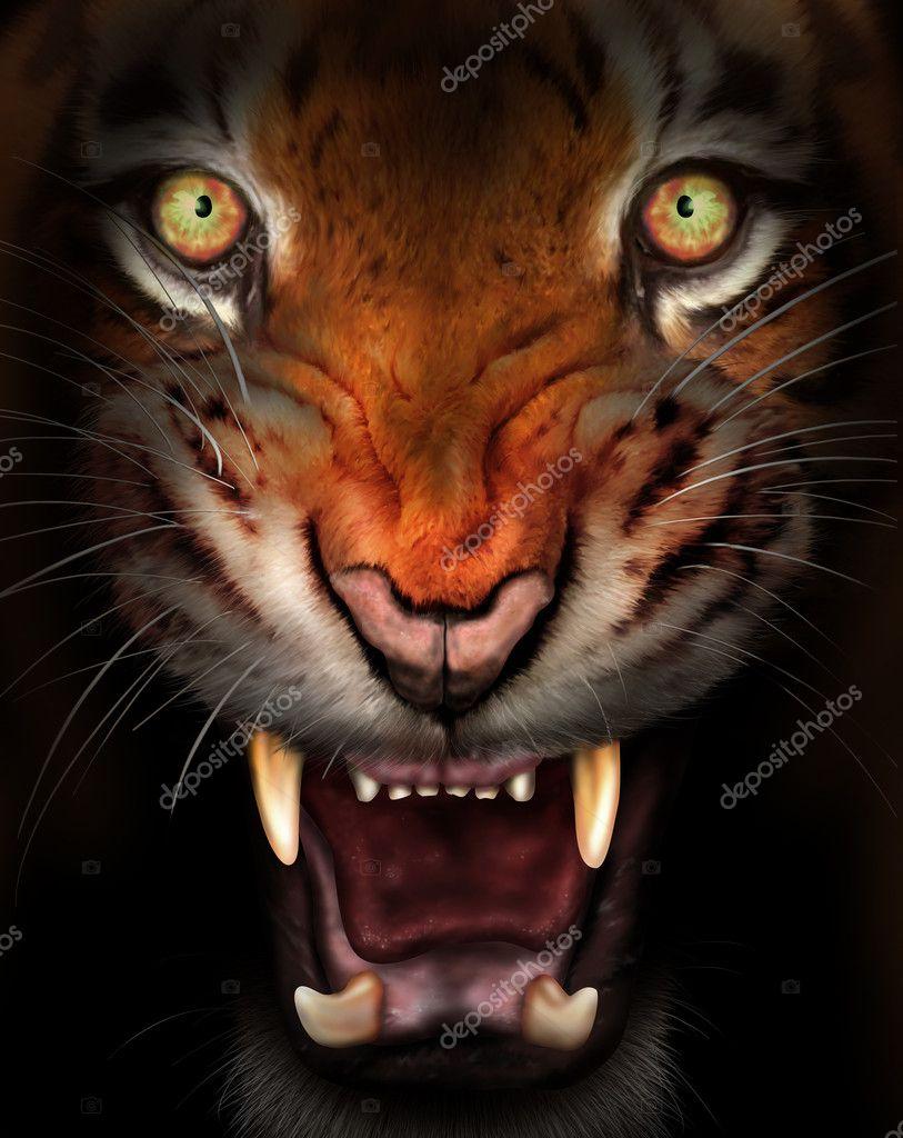 Avatar Wallpaper Hd 3d Fierce Tiger Stock Photo 169 Paulfleet 6442904