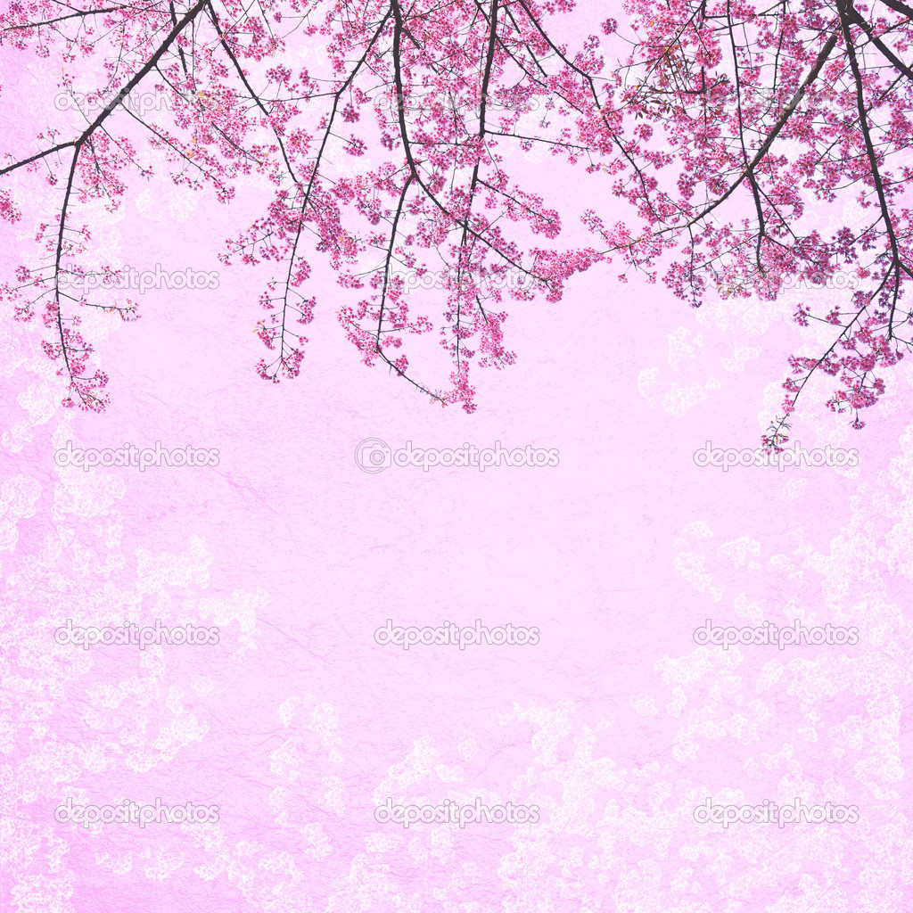 Seamless Background Pattern With Blossoming Sakura 6650206