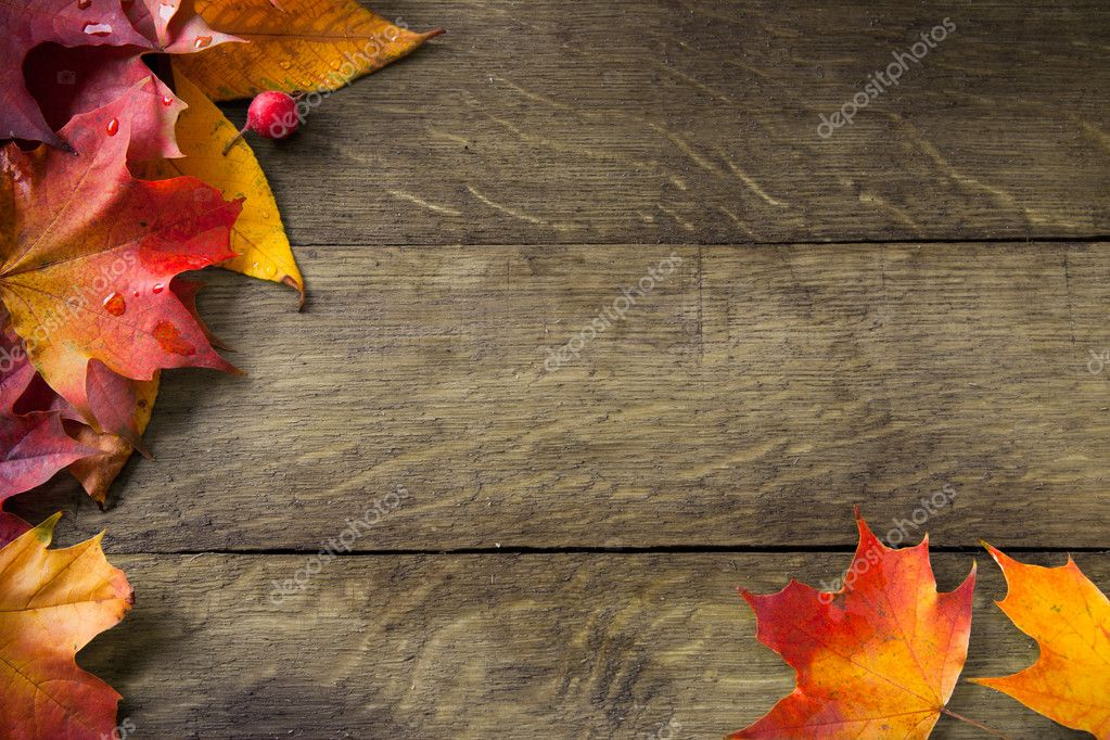 Free Fall Pumpkin Wallpaper Yellow Autumn Leaves On Background Old Wood Stock Photo