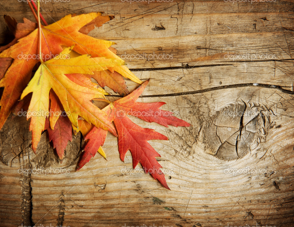 Falling Leaves Live Wallpaper Hd Autumn Leaves Over Wood Background With Copy Space