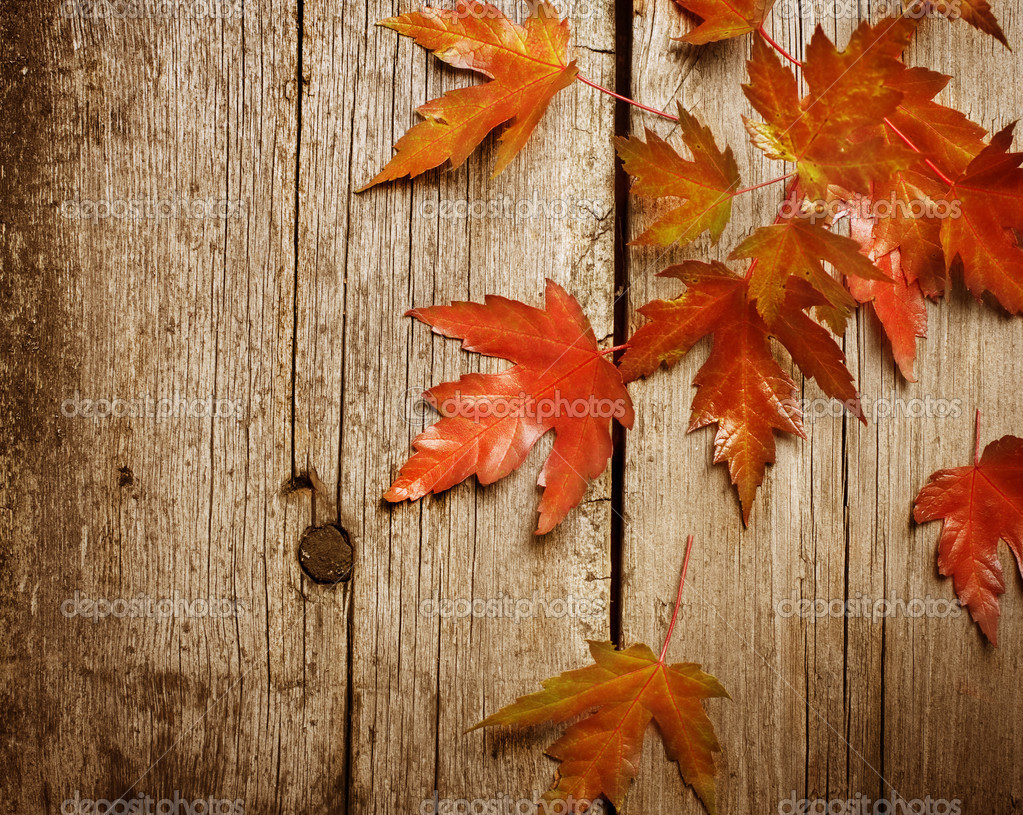 Fall Leaves Wallpaper Powerpoint Background Autumn Leaves Over Wooden Background With Copy Space