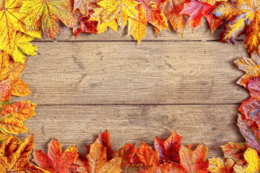 Falling Leaves Live Wallpaper Download Autumn Leaf Border Stock Photo 169 Springfield 11466303