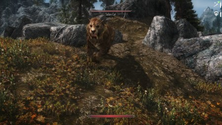 Animal Allegiance Skyrim