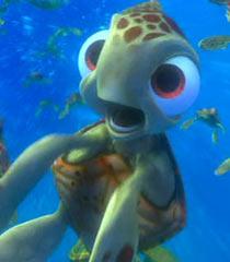 Lifeline Quotes Wallpaper Squirt Voice Finding Nemo Movie Behind The Voice Actors