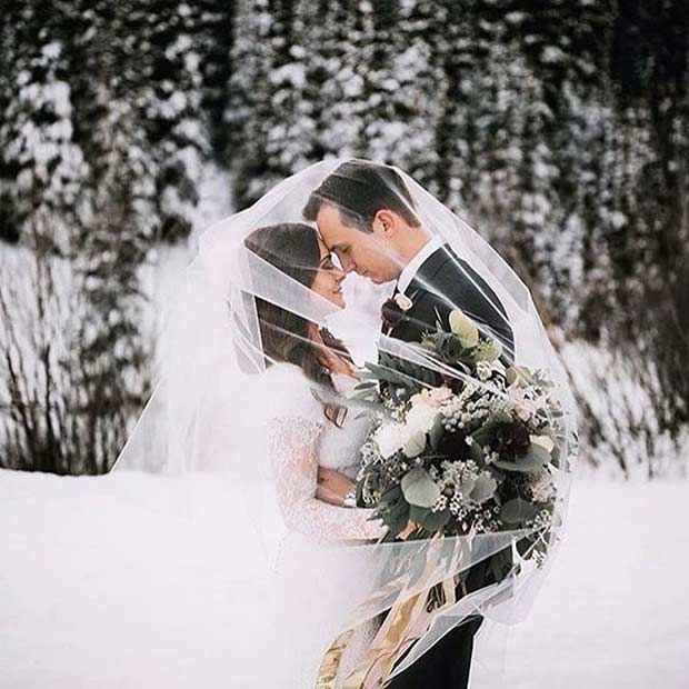 Winter Wedding Photo with a Veil