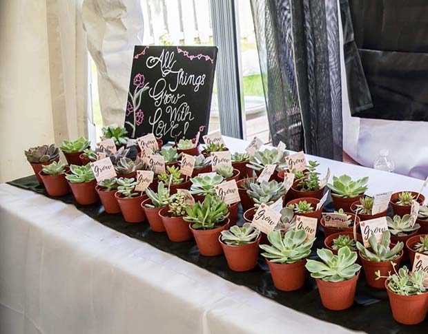 Succulent Bridal Shower Favor Idea