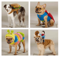Halloween Costumes for Dogs - Close To Home