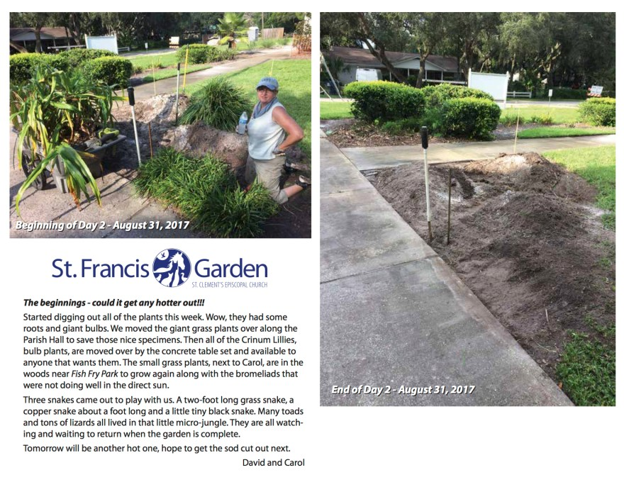 Day2 of StFrancis Garden