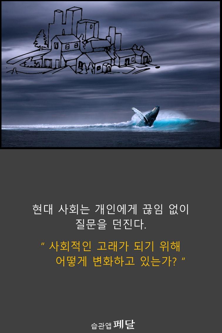 whale_25