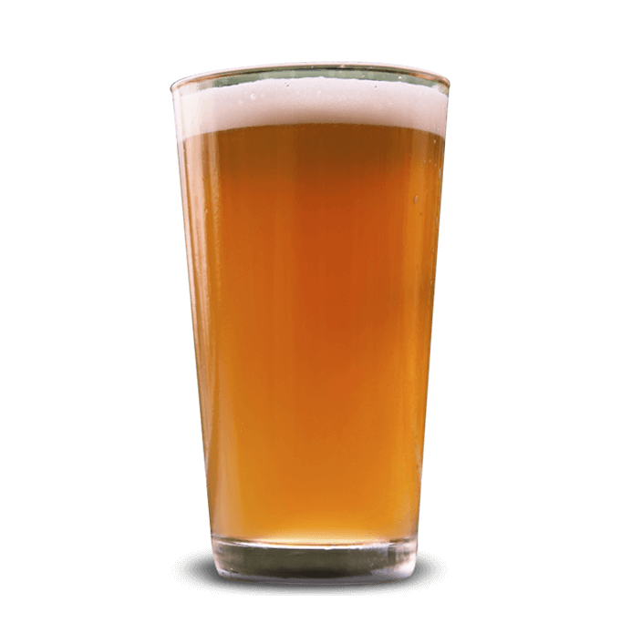 best pale ales and lagers in durango co steamworks