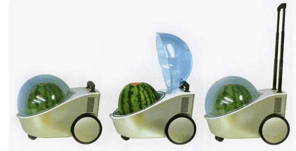 http://i0.wp.com/stemjobs.com/wp-content/uploads/2014/07/watermelon_cooler2.png