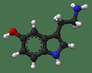 Serotonin from wikimedia commons