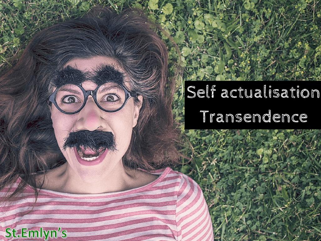 Self actualisation&Transendence(2)