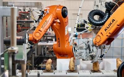 Robotter overtager nedslidende kartoffelarbejde fra laboranter