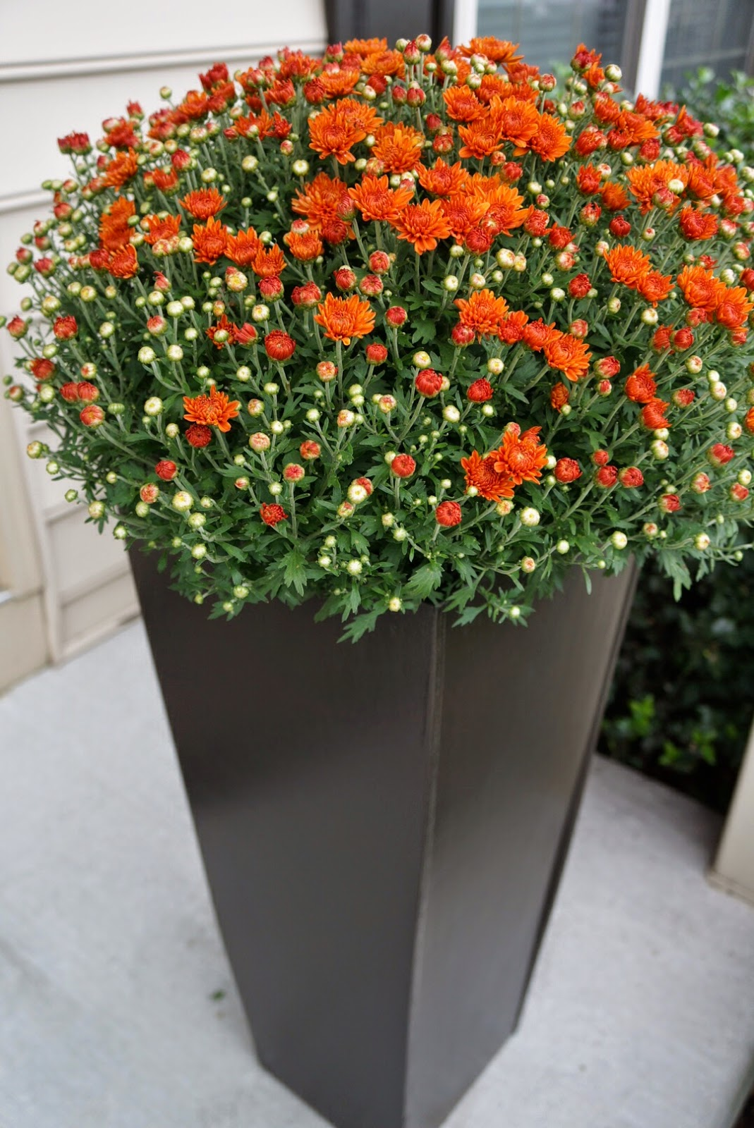 Big Flower Planters Decor Tall Garden Planters Tall Planters Large