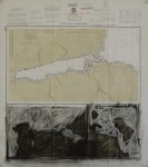 "Kodiak, 2006, mixed media, 28x25"""