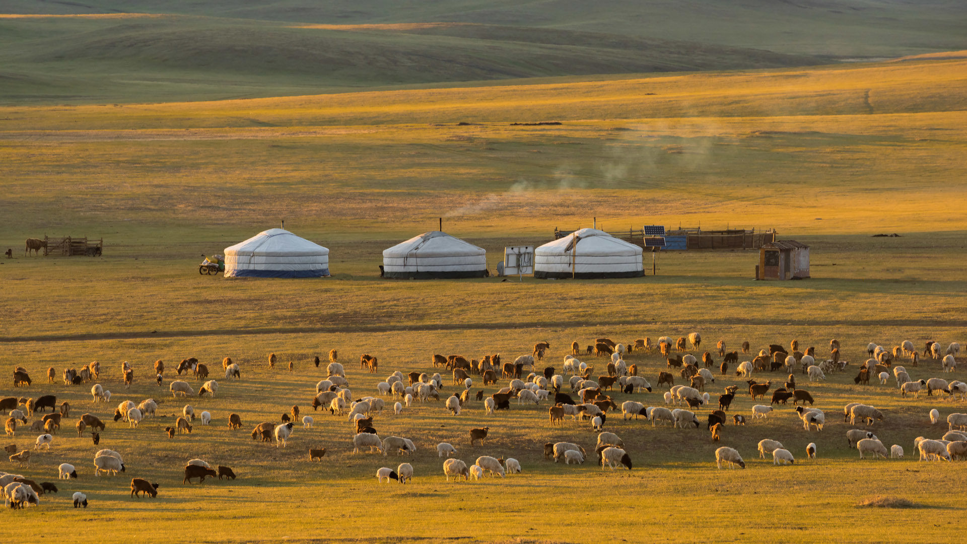 Travelling Mongolia Blog The Magic Of Mongolia Steppes Travel