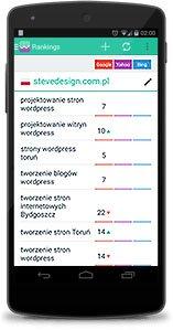 Pozycje w google - SERP - Stevedesign