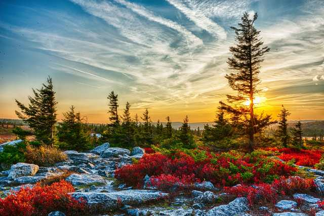 Free Fall Bc Nature Wallpaper Canaan Valley West Virginia Stephen L Tabone Nature