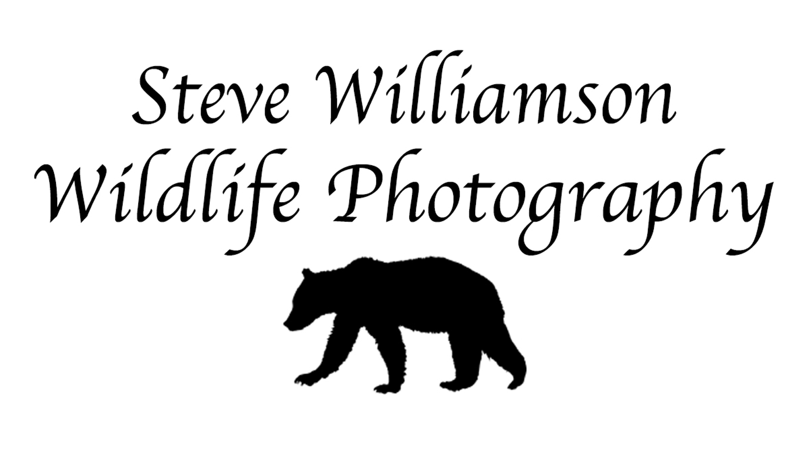 Steve Williamson Wildlife Photography