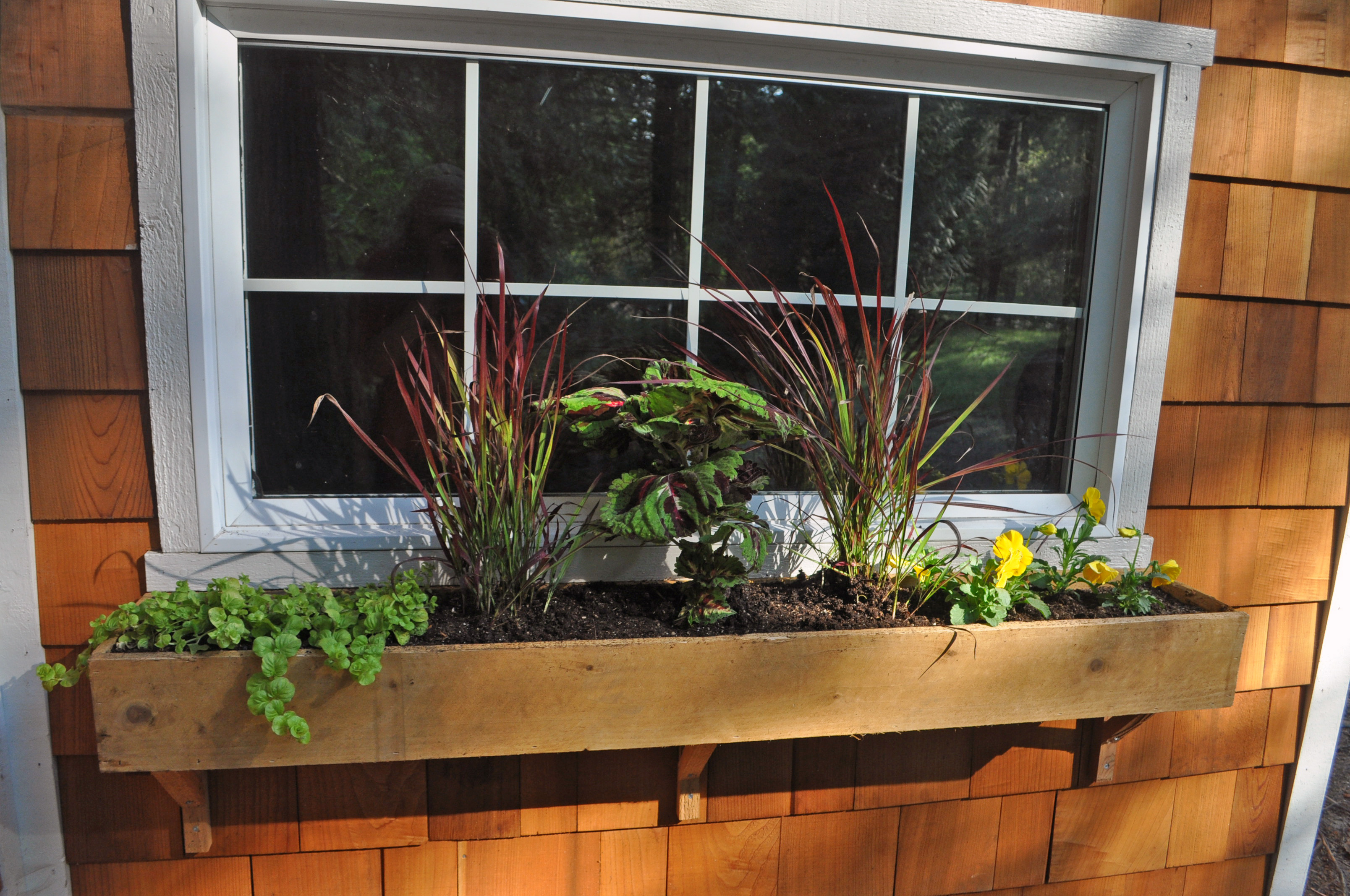 Diy Garden Window Plans No Space For A Garden 8 Ways To Grow Plants In Even The