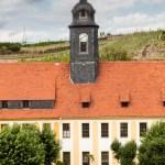 Weinwanderung von Seusslitz nach Meißen (1)