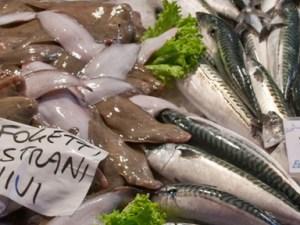Fischmarkt.jpg