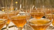 orangewein-header