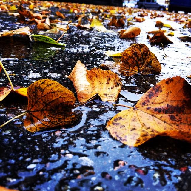 погода в Стокгольме, сентябрь