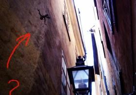 Загадка на самой узкой улице