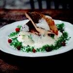 Лапландский лосось