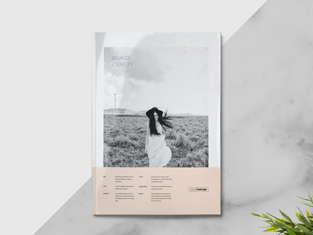 Brand Manual Template FREE InDesign Templates