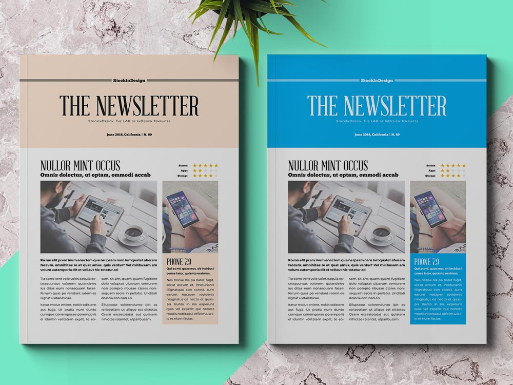 Business Newsletter Template Adobe InDesign Templates for Designers - company newsletter template free