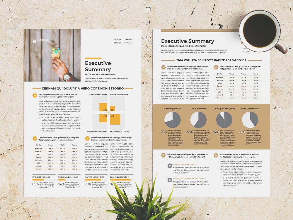 Free Executive Summary Template StockInDesign
