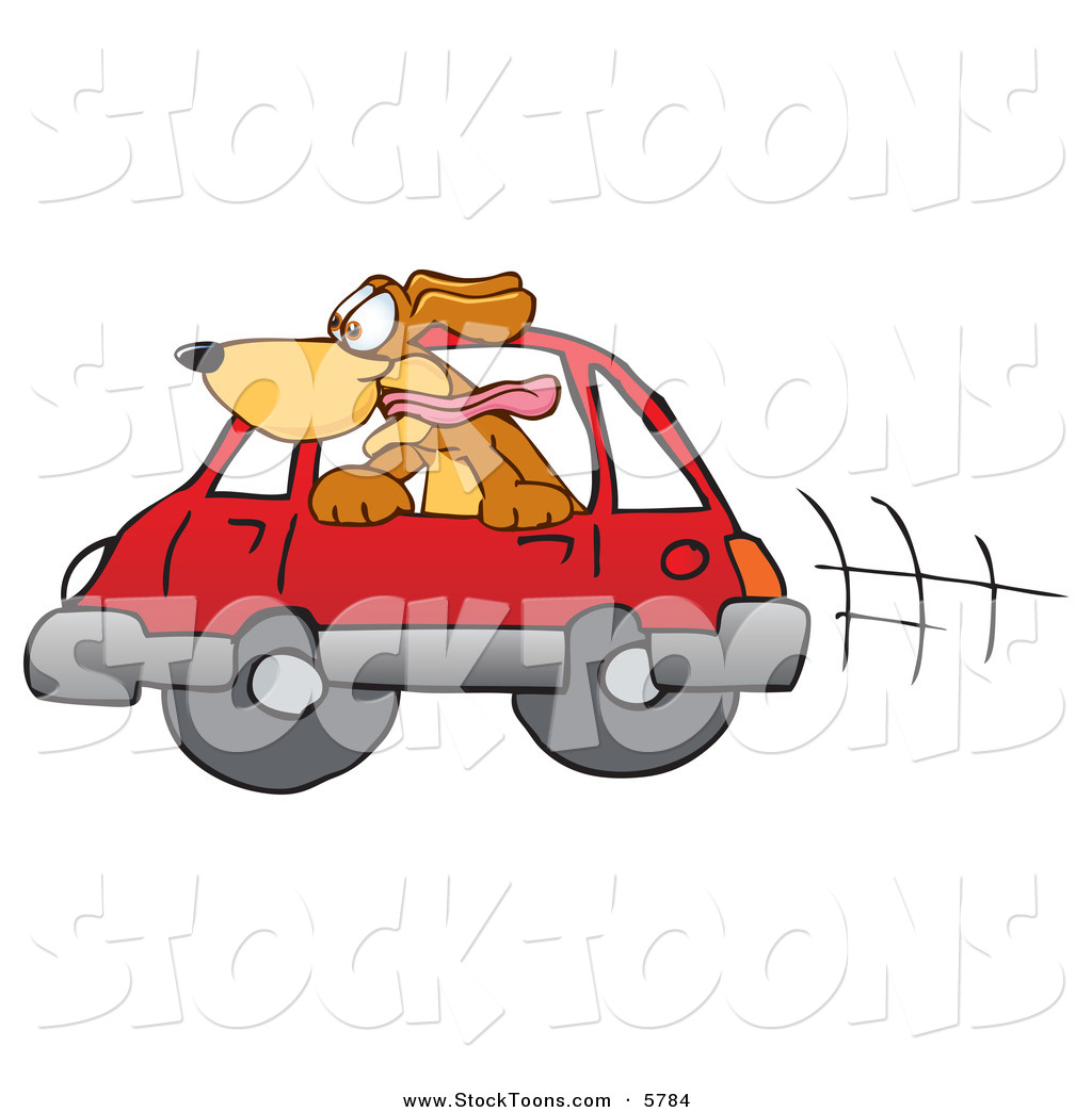 Happy brown dog mascot cartoon character sticking his head out of a car window