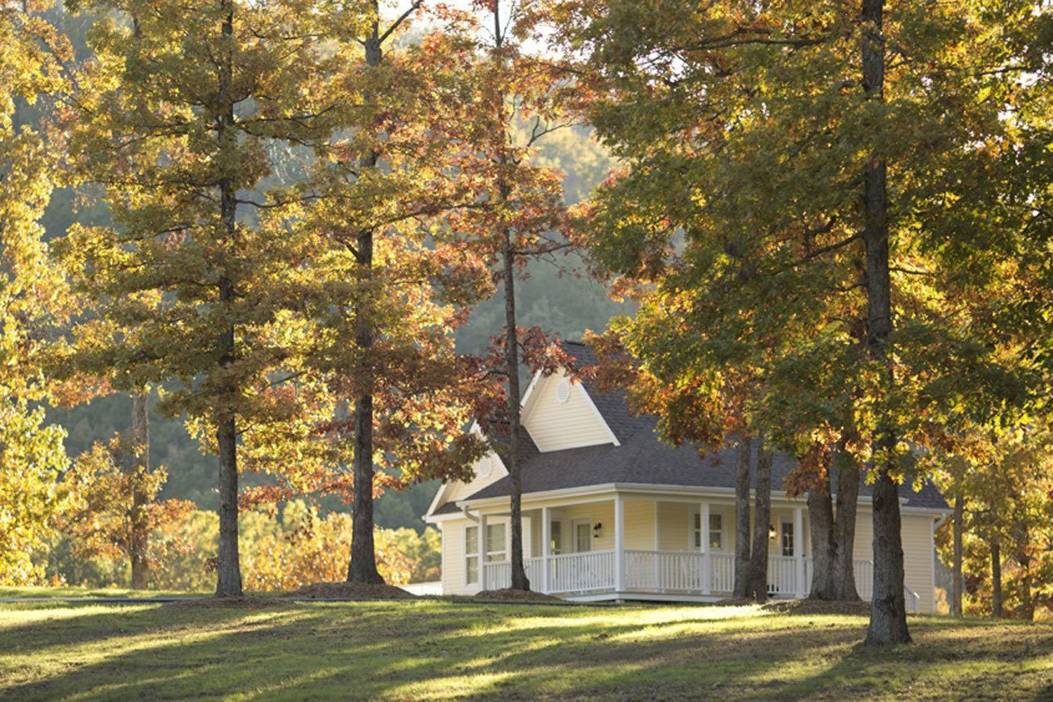 Wolf System Stonehill Cottages: Cabin/cottages Rentals In Mena, Arkansas